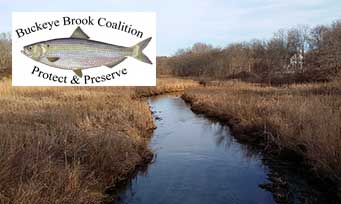 Buckeye Brook Coalition